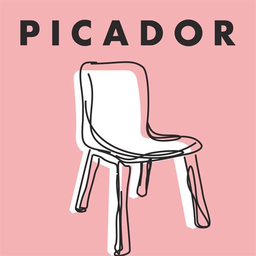 Picador Guest Professorship for Literature